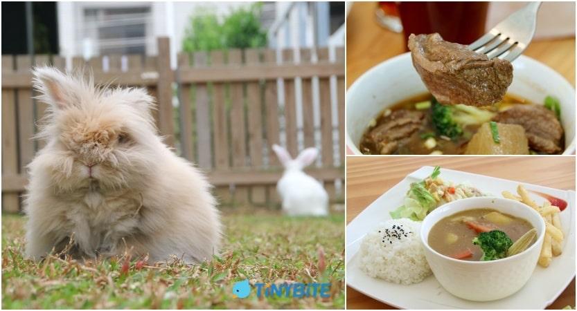 台中美食 南屯美食 台中寵物友善餐廳 LeChien 樂享森活 摩卡 蘇打 流浪兔 小鳥胃 tinybite